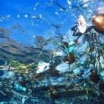 Un «continent» de déchets dans le Pacifique