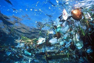 septième continent compose de déchets