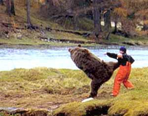pub ours pêcheur saumon