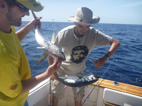 pêche thon Guadeloupe