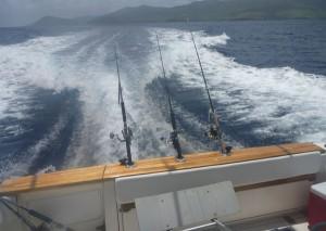 Guadeloupe pêche à la traine