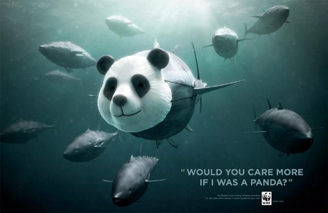 thon rouge panda WWF