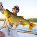 pêche dorado Argentile