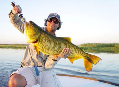 pêche dorado Argentine