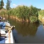 suprise à la pêche