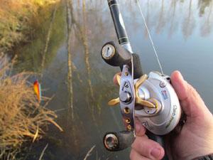moulinet pêche casting