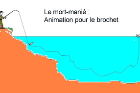 animation brochet mort-manié