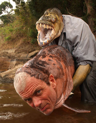 Jeremy Wade tigerfish détournement