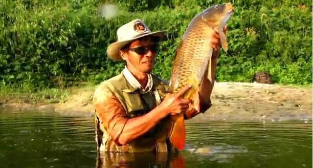 pêche à la mouche de la carpe