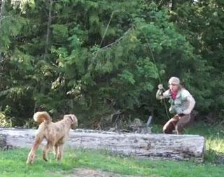 pêcher le chien
