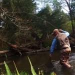 attraper le poisson avec une épuisette