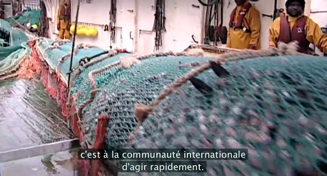 degats de la peche industrielle, video Greenpeace