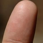 Un doigt humain dans une truite