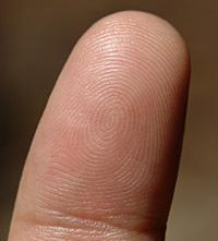 doigt dans une truite