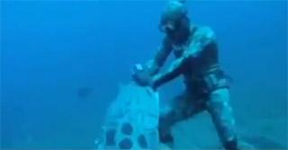 un mérou géant attaque un chasseur sous marin