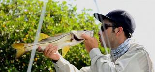 pêche du snook en Floride