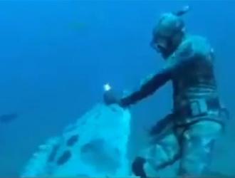 bagarre entre un plongeur et un poisson