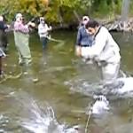 Canne à pêche cassée