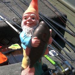 peche partout, le nain mascotte de culture fish