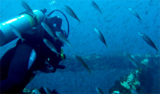 plongeur sur épave