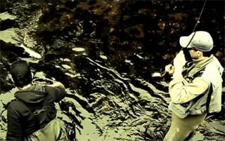 pêche à la mouche en Bretagne