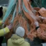 marin pêcheurs remontent le filet