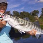 Pêche dans le delta de Californie
