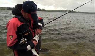 technique de pêche du bar au bord