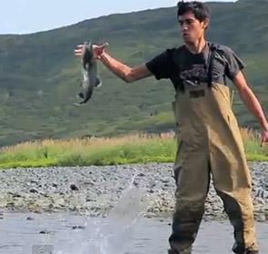 pêche du saumon  sans canne