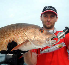yellow snapper leurre ultimate fishing
