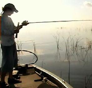 canne à pêche brisée