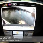 Culture Fish 22