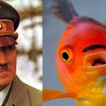 Le poisson qui a la moustache d&rsquo;Hitler