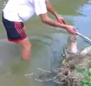 pêcheur électrocuté