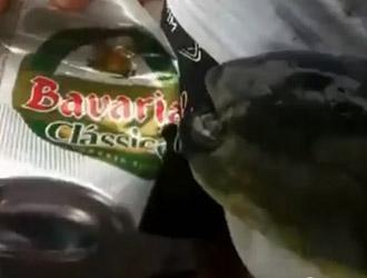 ouvre boite poisson