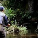 riviere a truite bretagne