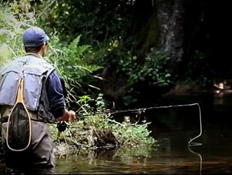 un joli ruisseau à truites en Bretagne
