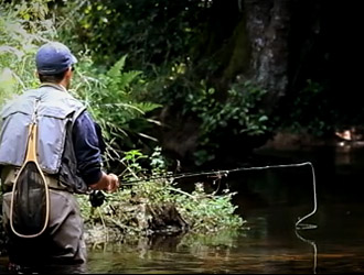 trout fishing in Brittany