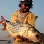 Tigerfish on Zambezi river