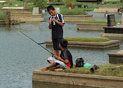 fishing in a cemetery