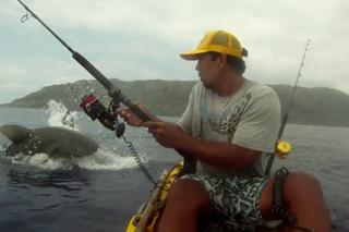 requin attaque kayak