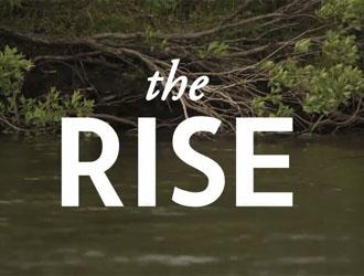 The rise, vidéo de gobages