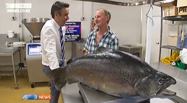 plus grosse truite pêchée