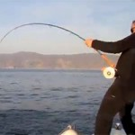 Pêche à la mouche parmi les thons