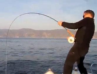 pêche au thon à la mouche