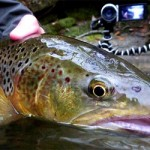 Pêche à la mouche dans les Pyrénées