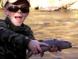 petit pêcheur de truite