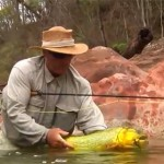 Pêche du dorado en Argentine