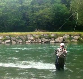 pêche du samon à la mouche dans le Bearn
