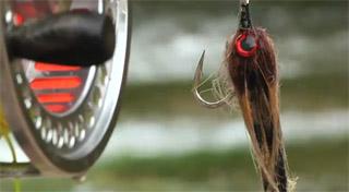 streamer dorado flyfishing